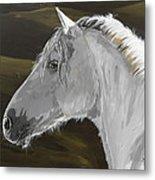 Andalusian Foal Metal Print