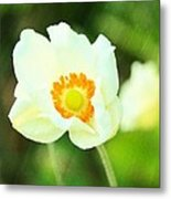 Anemone Metal Print by Cathie Tyler