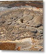Anemone Geyser In Upper Geyser Basin Metal Print