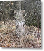 Angel In The Woods Metal Print by Marisa Horn