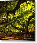 Angel Oak Limbs Crop 40 Metal Print