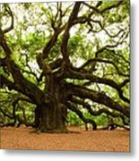 Angel Oak Tree 2009 Metal Print