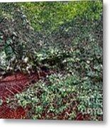 Angel Oak Tree 3 Metal Print