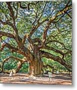 Angel Oak Tree In Charleston Sc Metal Print