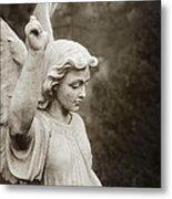 Angel Of Comfort Metal Print by Terry Rowe