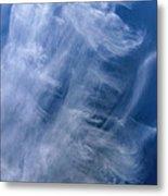Angel Wings Metal Print