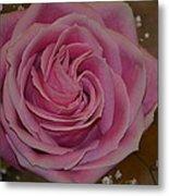 Angel's Pink Rose Metal Print