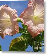 Angel's Trumpet Metal Print