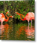 Angry Birds - Doubles Match Metal Print