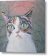 Anguish Of A Cat Metal Print