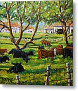 Angus Cows Under The Cool Shade By Prankearts Metal Print