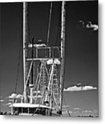 Anh Quoc Bw Metal Print