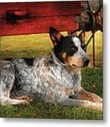 Animal - Dog - Always Faithful Metal Print by Mike Savad