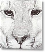 Animal Kingdom Series - Mountain Lion Metal Print