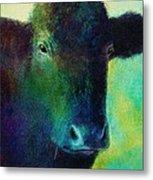animals - cows- Black Cow Metal Print