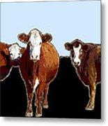 Animals Cows Three Pop Art With Blue Metal Print
