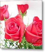 Anniversary Roses With Love 3 Metal Print