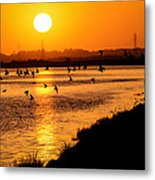 Anniversary Sunset Metal Print