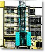 Another Blue Crane  Metal Print