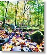 Another Enchanted Forest Metal Print