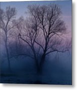 Another New Day Metal Print