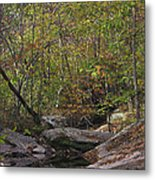 Another Peaceful Afternoon Metal Print