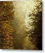 Another Road Travelled Metal Print