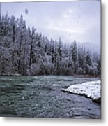 Another Snowy Day Metal Print