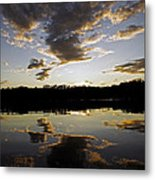 Another Sunset In The Jungle Metal Print