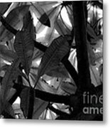 Another Tree Metal Print