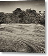 Another View Of Seven Metal Print