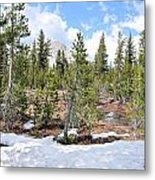 Another Winter Passes In The Yosemite High Country Metal Print