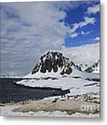 Antarctic Wilderness... Metal Print