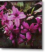Antique Floral  Metal Print