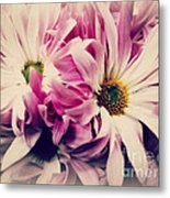 Antique Pink And White Daisies Metal Print