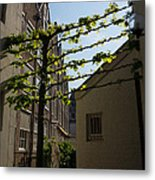 Any Space Can Be A Garden - Creative Urban Gardening From Amsterdam Metal Print