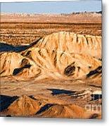 Anza Borrego Coachella Valley By Diana Sainz Metal Print