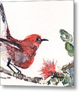 Apapane - Native Hawaiian Bird Metal Print