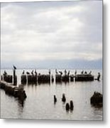 Apostles Of The Salton Sea Metal Print