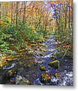 Appalachian Highlands Metal Print