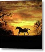Appaloosa Sunset Metal Print