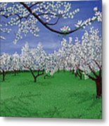 Apple Blossoms Metal Print