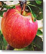 Apple On The Tree Metal Print