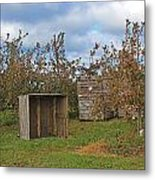 Apple Orchard 1 Metal Print
