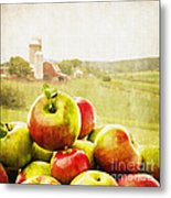 Apple Picking Time Metal Print by Edward Fielding