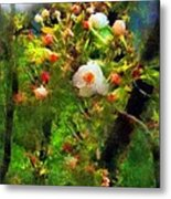Apple Tree In April Metal Print