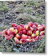 #apples Metal Print