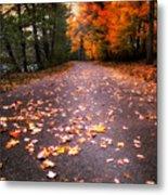 Approaching Autumn Metal Print