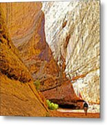 Approaching The Shadow In Grand Wash In Capitol Reef National Park-utah Metal Print
