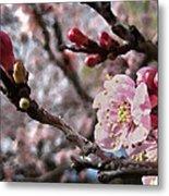 Apricot Floral Metal Print